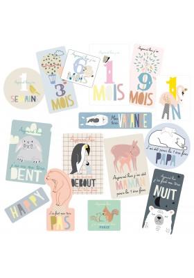 BABY CARDS langue française
